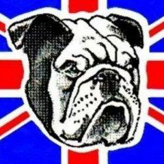 Eastville Bulldog